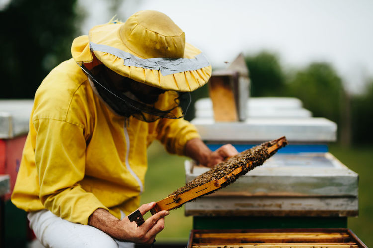 Beekeeper working over beehive at farm