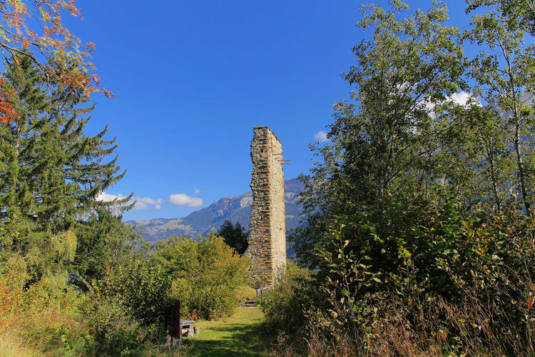 Burg Herbststimmung Ruine Beauty In Nature No People Outdoors Tall - High Tranquility