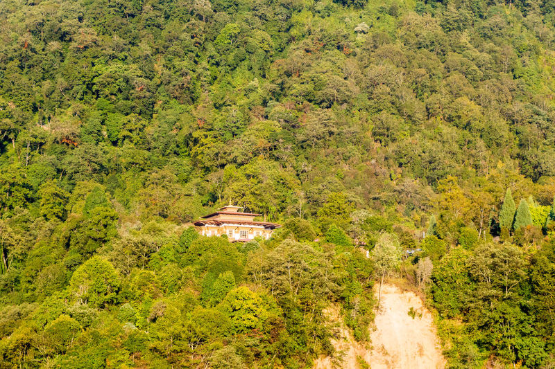 ASIA Travel Architecture Beauty In Nature Bhutan Building Built Structure Day Environment Foliage Green Color Growth High Angle View Land Landscape Lush Foliage Nature No People Outdoors Plant Scenics - Nature Tourism Tranquil Scene Tranquility Travel Destinations Tree