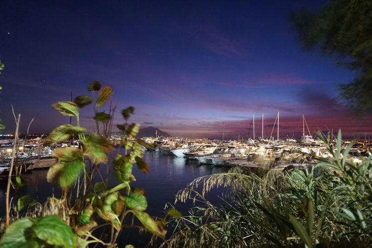 Sailboats in marina at night