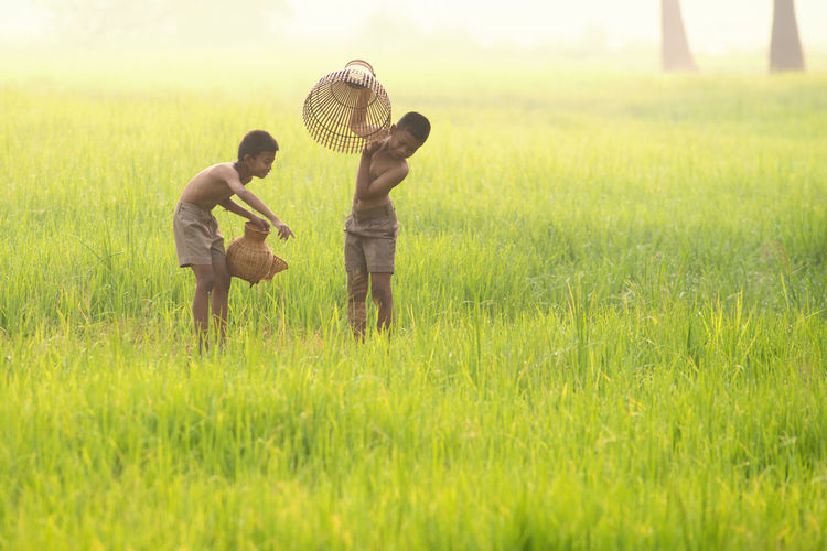 Shirtless male friends holding containers on rice paddy