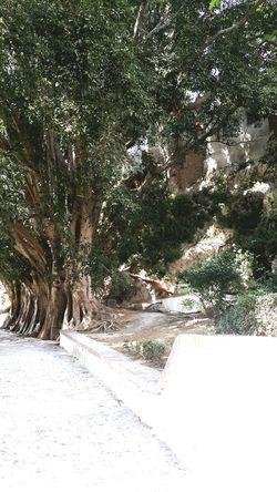 Havin Fun All The Time Traveling Perfect Day Awarmplace Memories Tetouan Morocco