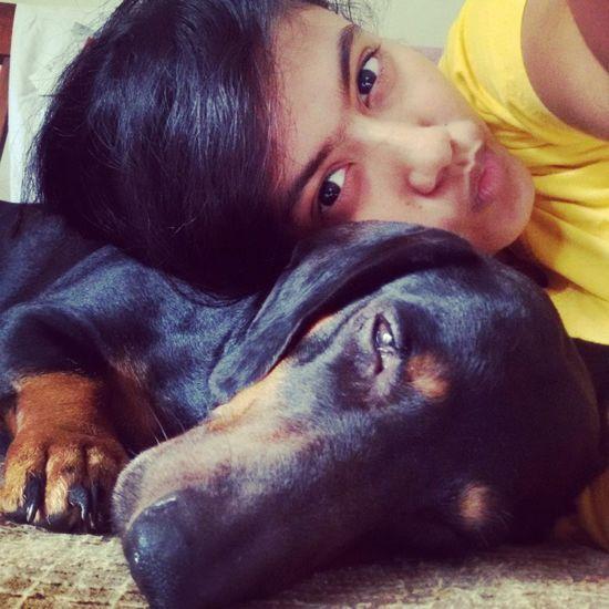 Pet Love Sleepy Cuteness Tan Black Dashund