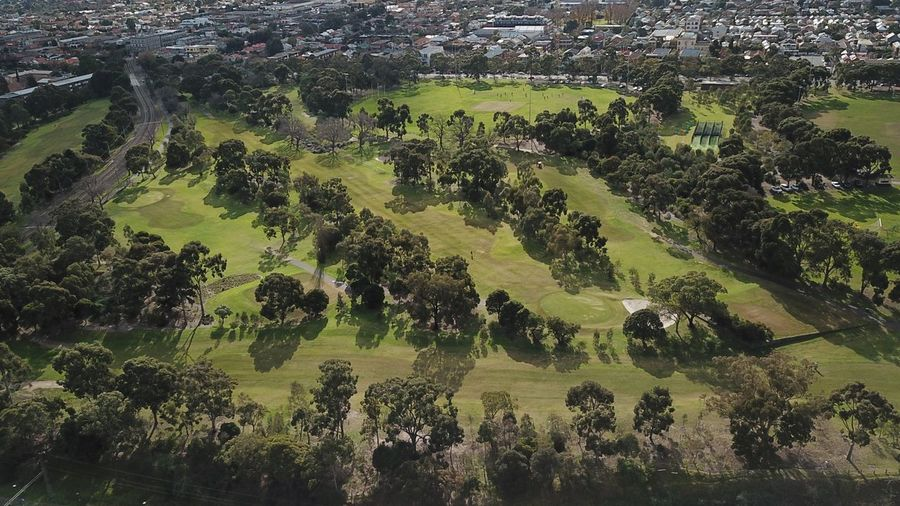 Relaxation Aerial View Aerial Drone  Trees Green Green Color Park Park - Man Made Space Golf Golf Course Plant Tree No People Nature Day Growth Green Color Scenics - Nature Tranquil Scene Landscape Field Agriculture Plantation Sunlight Environment Tranquility Beauty In Nature Outdoors Land