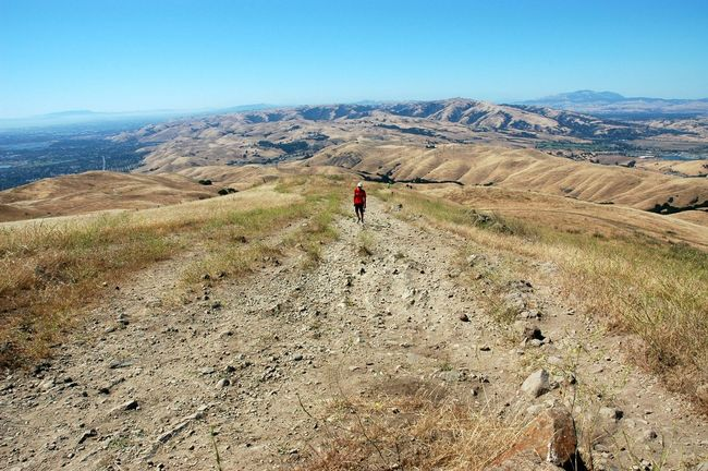 Hiking Landscape Leisure Activity Men Mountain Mountain Range Non-urban Scene Walking The KIOMI Collection The Great Outdoors With Adobe The Essence Of Summer The Following Mission Peak Regional Reserve Fremont California Feel The Journey