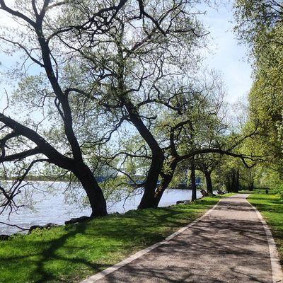 Saker jag mår bra av, del 49: De härliga möjligheterna till promenader och cykelturer kring Mälaren i Västerås. Självläkning Process 100sakerjagmårbraav Starkarevarjedag