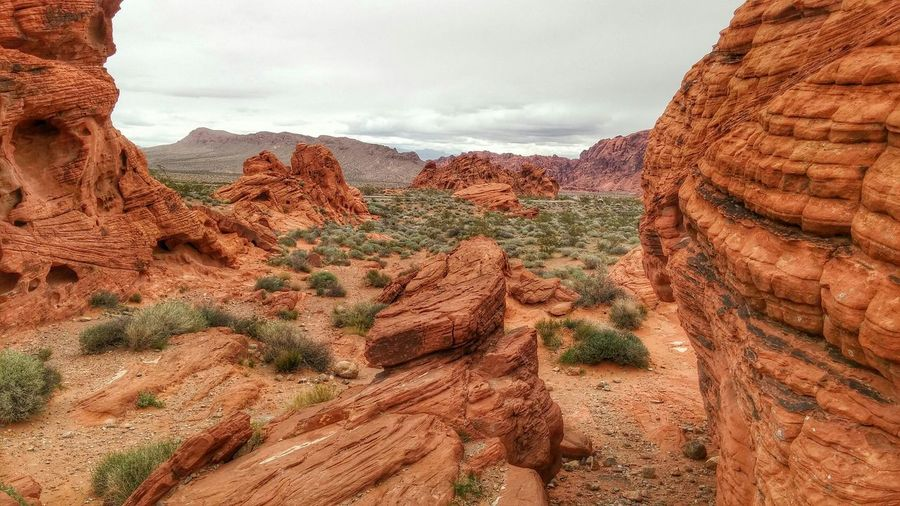 Barren rocky landscape in grand canyon national park