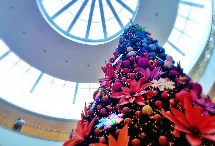 Christmas Tree Festive Season Eye4photography  EyeEm Best Shots Taking Photos Christmas Decorations Mall Popular Photos Enjoying Life Eyeem Philippines