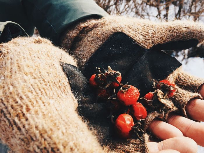 Hands Berries Winter Russia Healthy Eating Food Human Hand Food And Drink Freshness Outdoors Day Explore Beauty In Nature Cold Temperature Frozen EyeEmNewHere