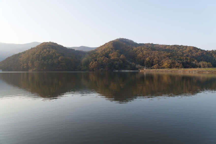 autumn lake of Mungwang Lake in Goesan, Chungbuk, South Korea Fall Beauty Mungwang Lake Autumn Lake Autumn Lakeside Beauty In Nature Clear Sky Day Lake Lake In Autumn Lakeside Mountain Nature No People Outdoors Reflection Scenics Sky Tranquil Scene Tranquility Tree Water Waterfront