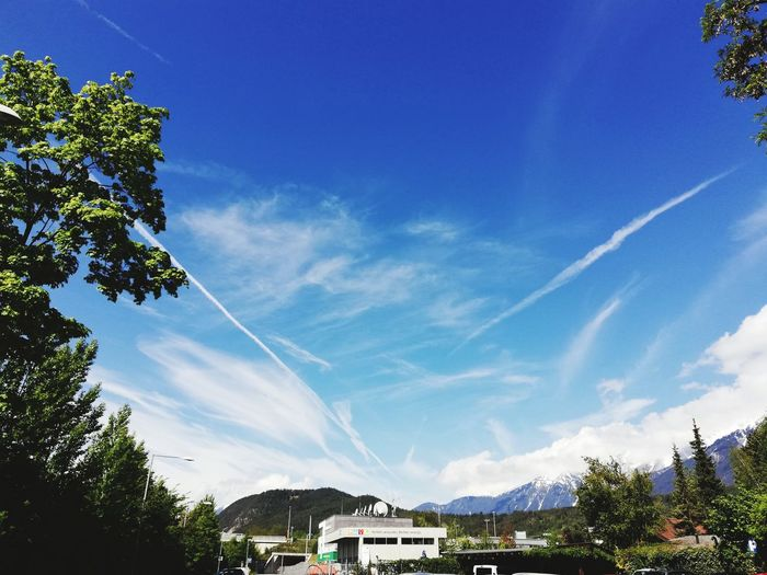 Tree Vapor Trail Blue Sky Architecture Built Structure Building Exterior Cloud - Sky Roof Tile Mountain Range Snowcapped Mountain Rooftop Roof Mountain Settlement Tiled Roof  Snowcapped Mountain Peak