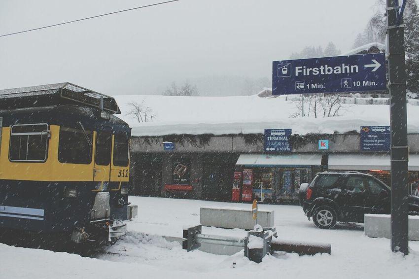 Traveling Grindelwald