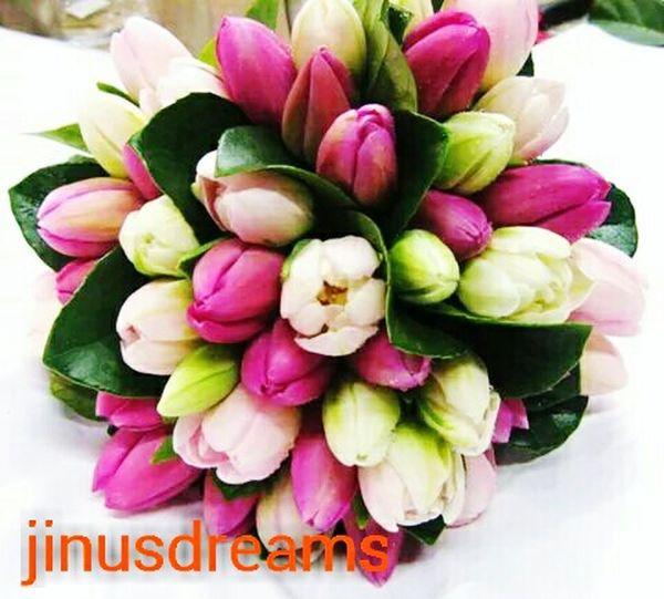 Working Flower Collection Flowerlovers Everyday Lives Good Night N Sweet Dream Gdnyt✨💕 Flowerslovers