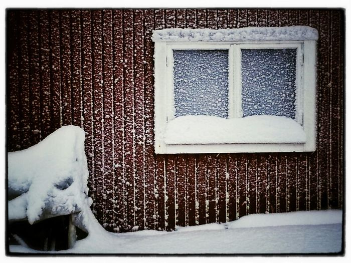Windows Winter Snow