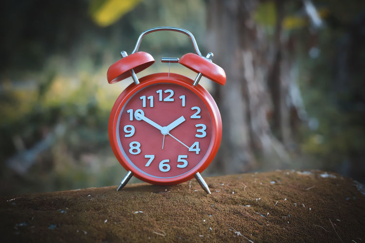 alarm clock Alarm Clock Clock Number Time Focus On Foreground Close-up No People Red Minute Hand Clock Face Tree Shape Geometric Shape Communication Accuracy Day Circle Outdoors Wood - Material Hour Hand Red Alarm Clock