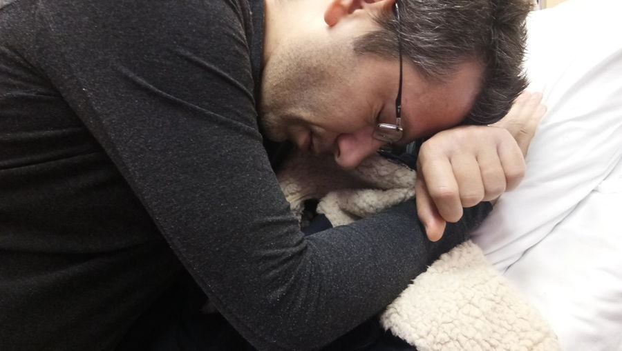 Human Hand Pets Men Togetherness Bonding Women Friendship Beard Care Lying Down Vet  Babyhood Wrapped In A Blanket Animal Hospital Examination Table Napping Stroking Chihuahua - Dog Blanket Newborn Animal Limb