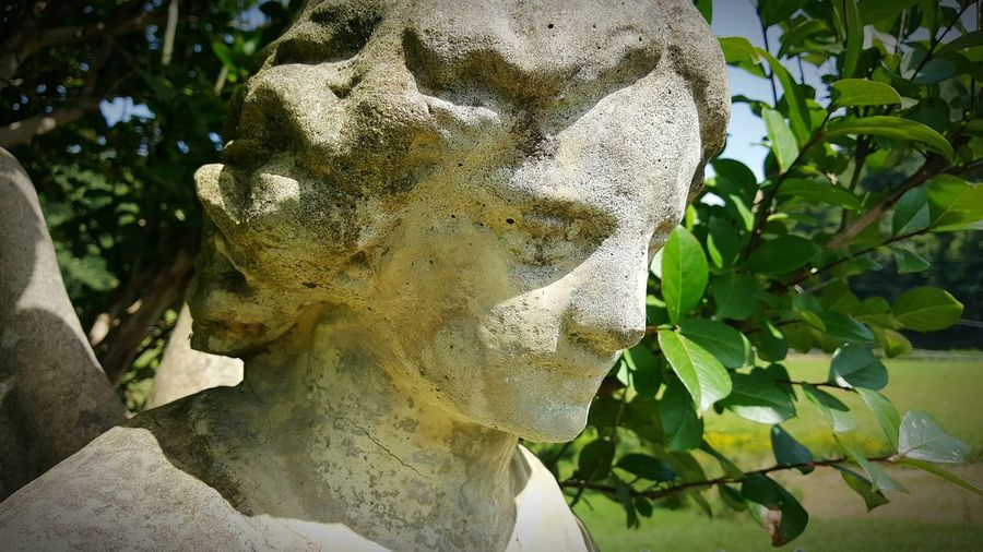 Archetype Statue Archetype Angel Tree Leaf Close-up Plant Green Color Growing Male Likeness Sculpted Sculpture Idol Human Representation Female Likeness