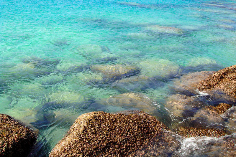 Sea water blue texture background, underwater stones. Wallpaper of clear blue tropical sea water with rocks under surface. Water Sea Blue Wallpaper Clear Tropical Surface Under Ocean Nature Stone Background Coast Rock Summer Beach View Scene Beautiful Beauty Travel Clean Turquoise Outdoor Sky Abstract Calm Light Color Crashing Tranquil Vacation Fresh Black Day Idyllic Seabed Azure Transparent Texture Seascape Rocks Summertime My Best Photo