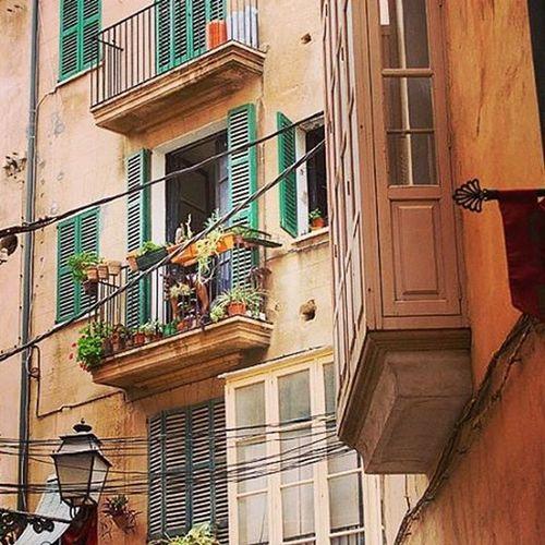 Wärst Du nicht gerade auch irgendwo in Spanien unterwegs? Also auf zur Arbeit - ich wünsche Dir einen sonnigen Tag😄 (Das Foto entstand übrigens in der Altstadt von Palma) Spanien Balearen Palma Altstadt Hinterhofromantik Hinterhof Blumentopf