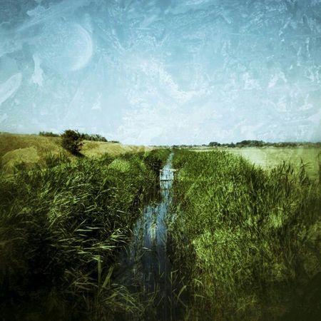Just a #snapseed test... #schier #schiermonnikoog #Holland #Netherlands #grass #green #water #stream #sky #skyporn Water Sky Holland Green Grass Skyporn Stream Netherlands Snapseed Schiermonnikoog Schier