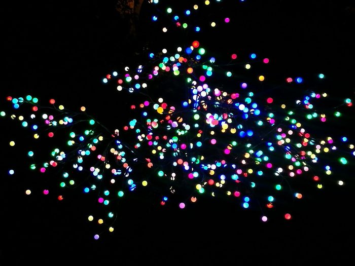 Abundance Multi Colored Lights Black Background Close-up Taking Photos Outdoors Capture The Moment