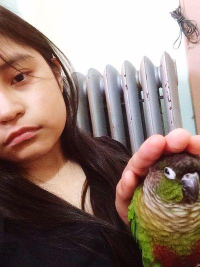 Peanut is not amused. Animals Birds Conure Greencheekconure