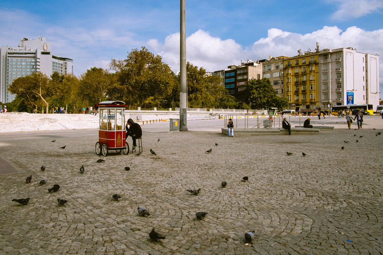 Adult Architecture Beach Birds Building Exterior Built Structure Cloud - Sky Day Large Group Of People Men Nature Outdoors People Pigeons Real People Sales Booth Sky Taxim Square Istanbul Tree