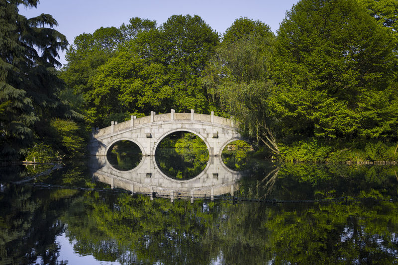 Pond Bridge Water Reflections on a bright clear day Arch Arch Bridge Architecture Bridge Bridge - Man Made Structure Built Structure Connection Day Green Color Growth Lake Nature No People Outdoors Plant Reflection Tranquility Tree Water Waterfront