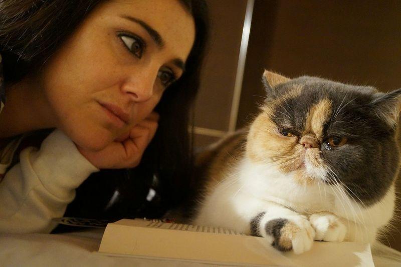 Hai un segreto? Confidalo al tuo gatto. Non lo saprà mai nessuno.