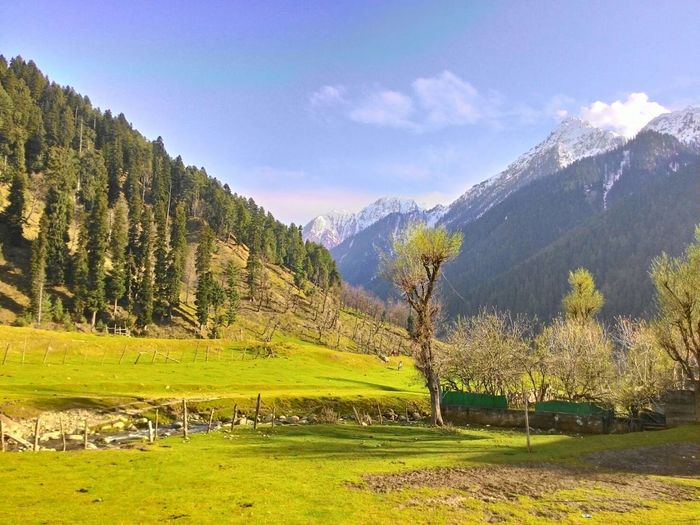 Kashmir Is Heaven Eyeem India Mountain View Beautiful Nature Nature Photography EyeEm Nature Lover Deserts Around The World Feel The Journey Eye4photography  Hanging Out Enjoying Life Taking Photos From My Point Of View Hello World @Kashmir India 43 Golden Moments
