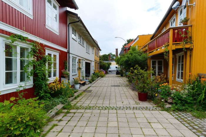 Fargerik Hurdalsgata på Kampen i Oslo. Street House Symmetry Oslo Norway Fujifilmx-t20 Zeiss12mm Visitnorway Visitoslo