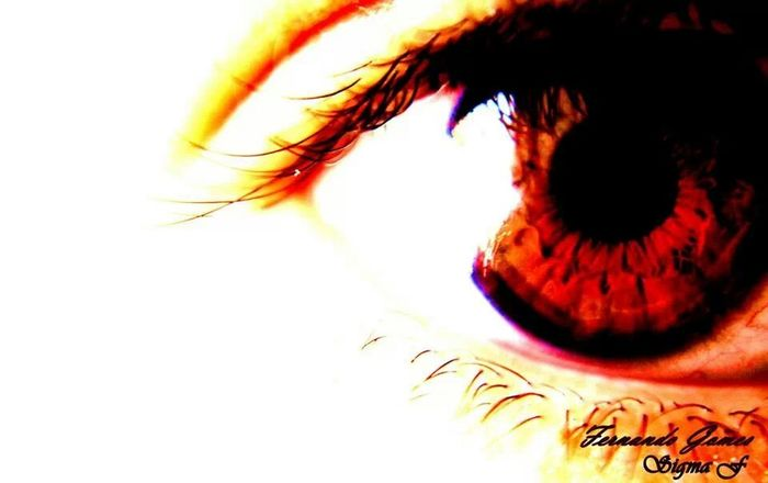 Eyes Picture Photography