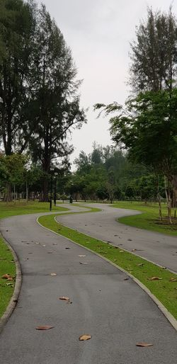 Miles to go before I.. Asphalt Overcast Blown Highlights Tree Grass Park Dry Leaves Note 8 Curve Snaking Changi Beach Park No People Tree Road Sky Grass Empty Road Diminishing Perspective The Way Forward Passageway Pathway Road Marking