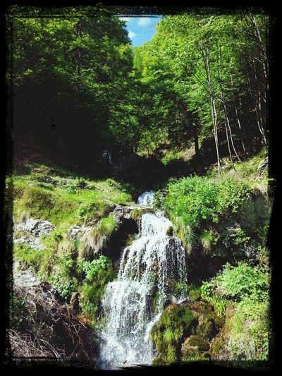 Nature First Eyeem Photo Take A Break Walking