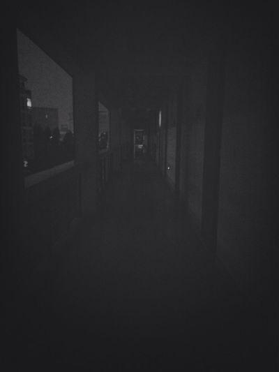 只有一个宿舍亮着灯