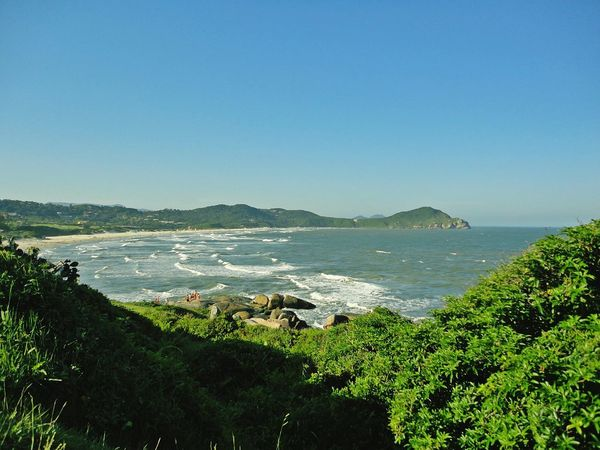 Praia do Rosa - SC Sea Blue Clear Sky Beach Landscape Scenics Santa Catarina, Brazil PraiaDoRosa Travel Destinations EyeEm Nature Lover BrasilSensacional Coastline Beautiful Beaches Beautiful Nature Tranquility Beachscape Nature Santa Catarina Brazil