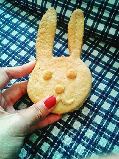 Bunny Biscuits Sweetmorning