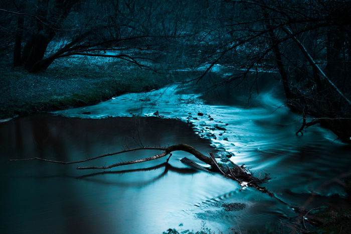 Herzogenrath Beauty In Nature Blue Branch Cold Temperature Dark Flowing Water Forest Kohlscheid Land Landscape Nature No People Outdoors Plant River Scenics - Nature Stream - Flowing Water Tree Water