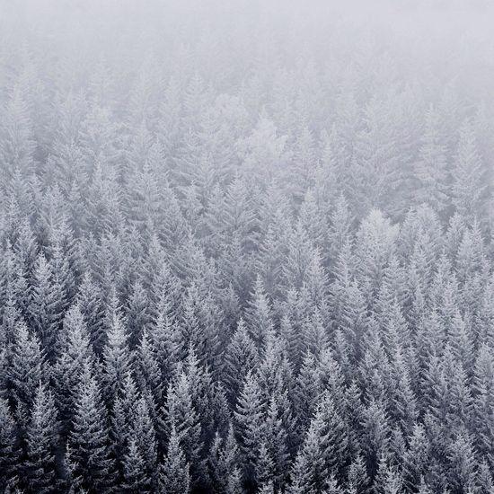 Winter Soon Wallpaper IOS 8