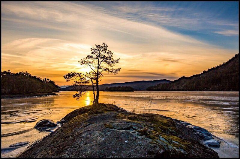 Alone 💕 Sunset