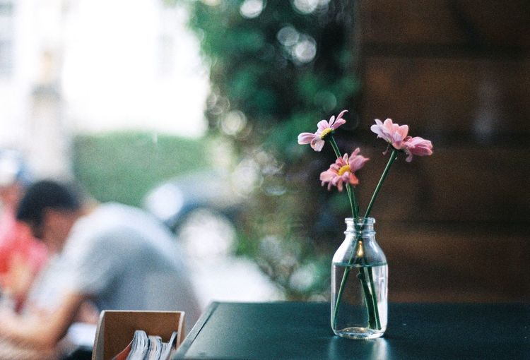 Close-up of pink flowers in a vase on a table in cafe with defocussed man in background
