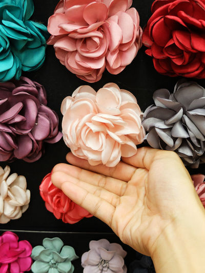 Close-up of hand holding roses