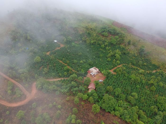 Home Thailand Droneshot Drone  Top View Dronephotography Drone Moments Cloud Sky People Nature Mountain Landscape Skyscraper Cloud - Sky Nature Photography Geen Mountain Tree Close-up Green Color