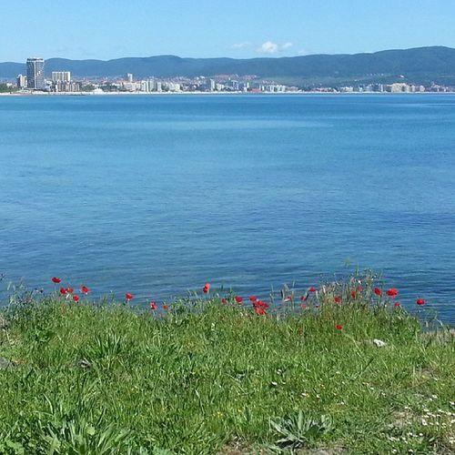 Home sweet home :( Imissyou Paradise Photography Sand sunny summer sunnybeach chill beautiful beach nessebar my sea city