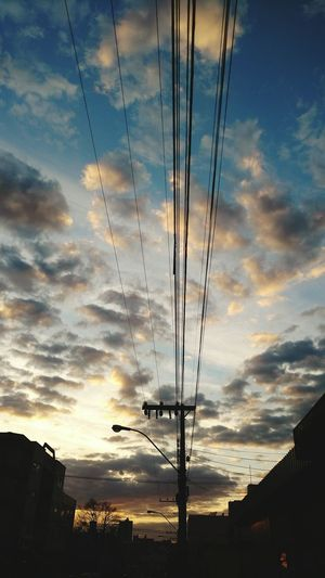 Bird Sunset Electricity Pylon Telephone Line Flying Cable Electricity  Silhouette Tree Power Line