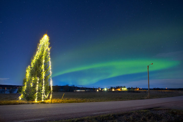 Illuminated Tree On Roadside Against Aurora Borealis In Sky