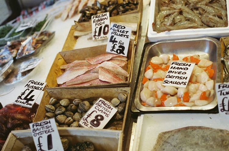 Fish Fishing Fish Market Butcher Butcher Shop Fish Monger Red Mullet Clams Oyster  Oysters Scollops Mussels Ribbon Fish