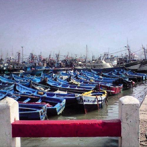 Essaouira Morocco Marssa Follow mefollow_back