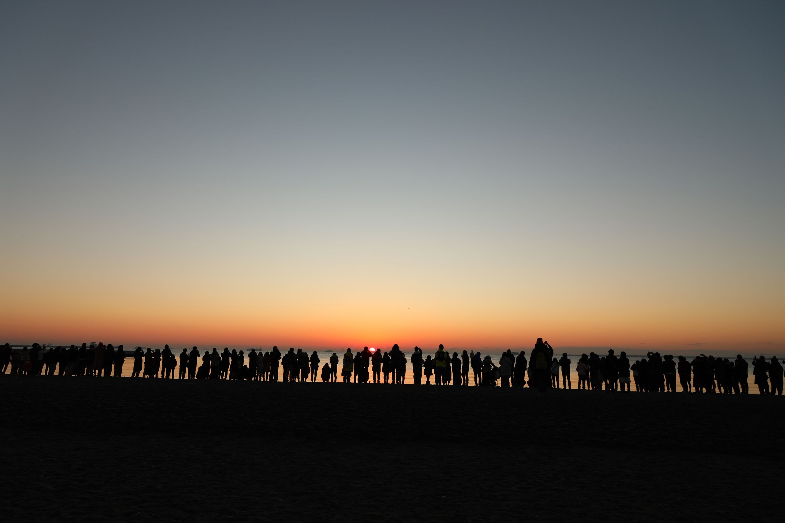 sunset, large group of people, silhouette, large group of animals, beauty in nature, nature, sky, clear sky, scenics, outdoors, bird, animal themes, day, people