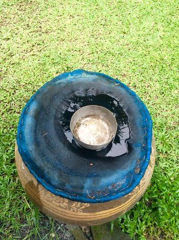 Water Blister Blister Water Jar Water Jar water bowl Grass Green Color Outdoors Circle Garden Wet